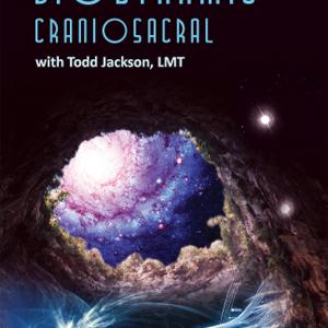 biodynamic cranial image